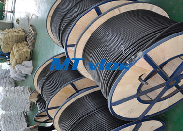 چین ASTM Stainless Steel Coiled Tubing Multi - Core Seamless Stainless Steel Pipe تامین کننده